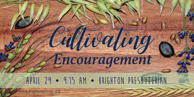 Cultivating Encouragement