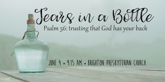 Tears in a Bottle: Trusting That God Has Your Back