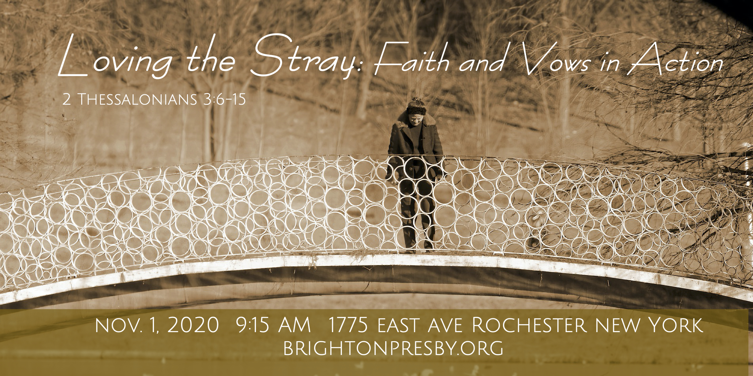 Loving the Stray: Faith and Vows in Action (Part 12 of Thessalonians Series)