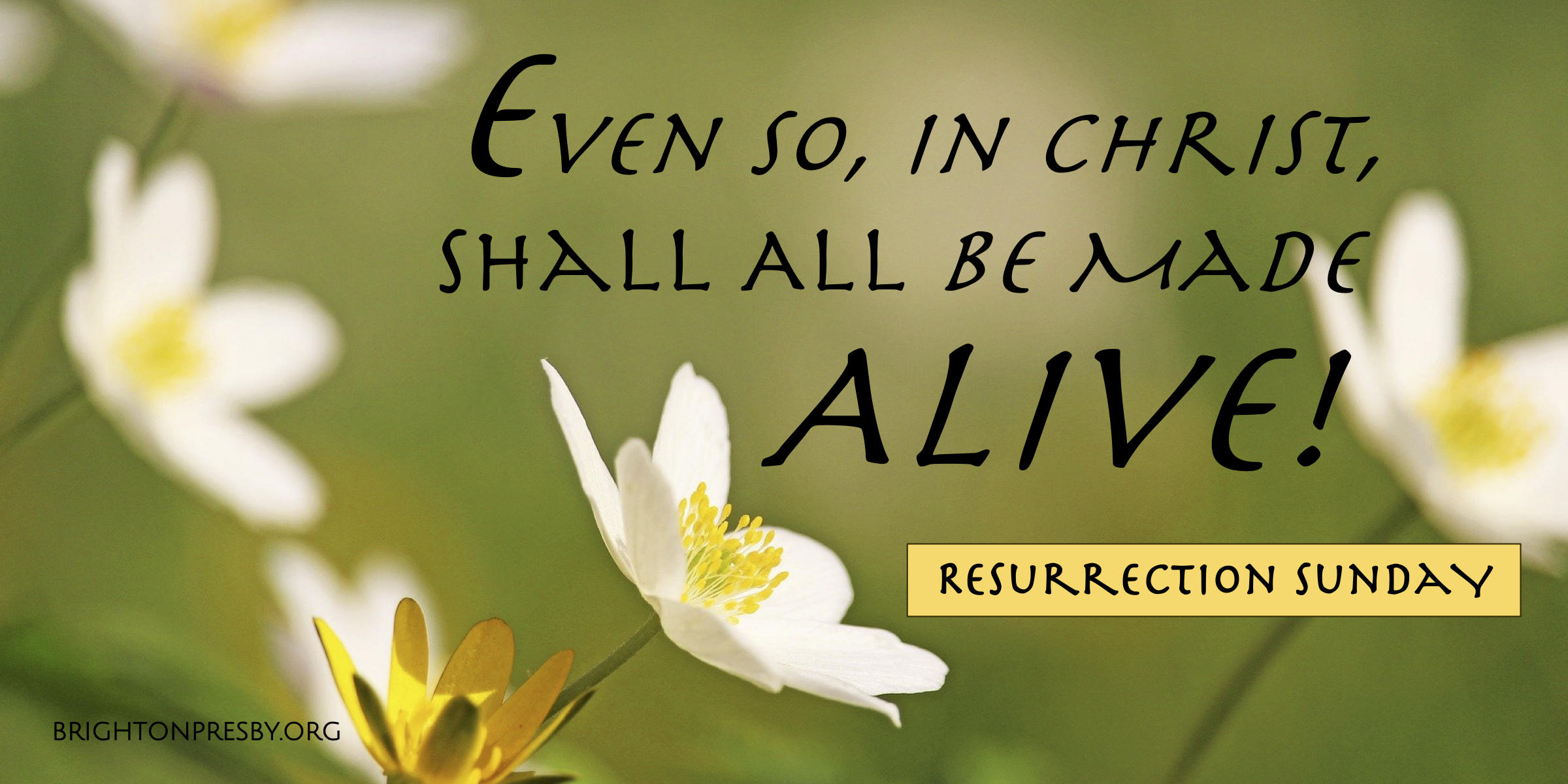 Even So, In Christ, Shall All Will Be Made Alive (Easter Message 2021)